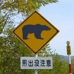 畑にクマが出た